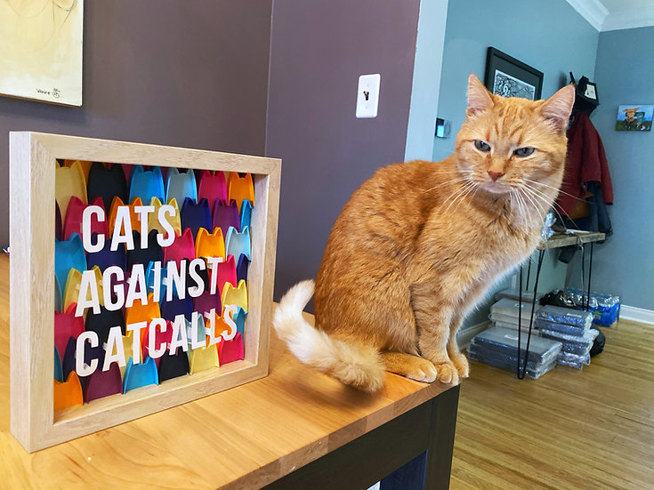 Cats Against Catcalls