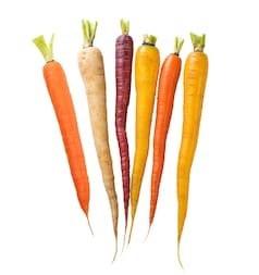 O passado secreto das cenouras