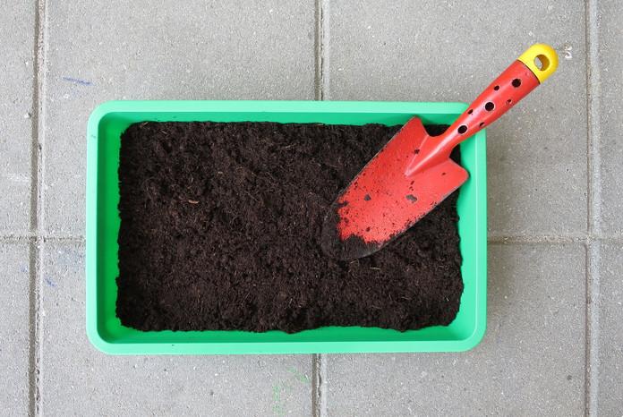Horta Caseira – Parte I – Por que fazer uma horta em casa?