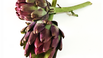 Raio-X do alimento: Alcachofra