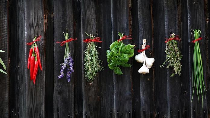 Ervas aromáticas: como aumentar sua durabilidade?