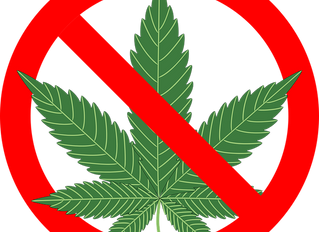 Reefer Madness: House Bill (HB) 110