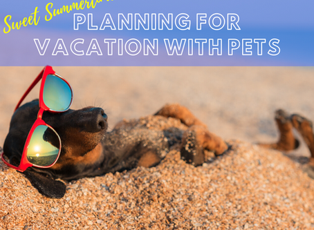 Sweet Summertime: Planning for Vacation with Pets