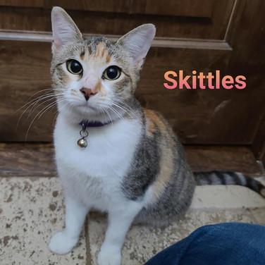 Skittles-mom1.jpg