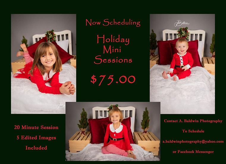 Holiday Mini Ad.jpg