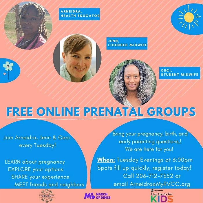 Copy of Online Prenatal Group Flyer-WEBS