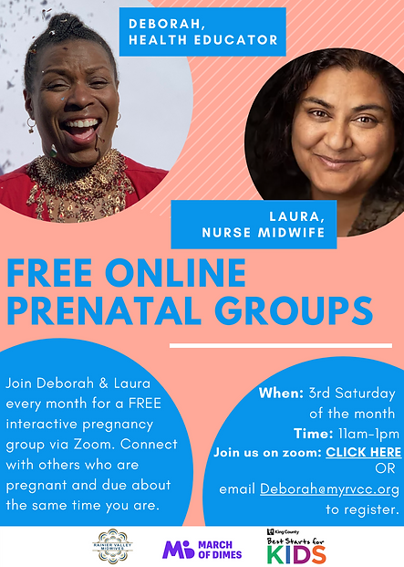 Online Group Prenatal Flyer Style #1.png