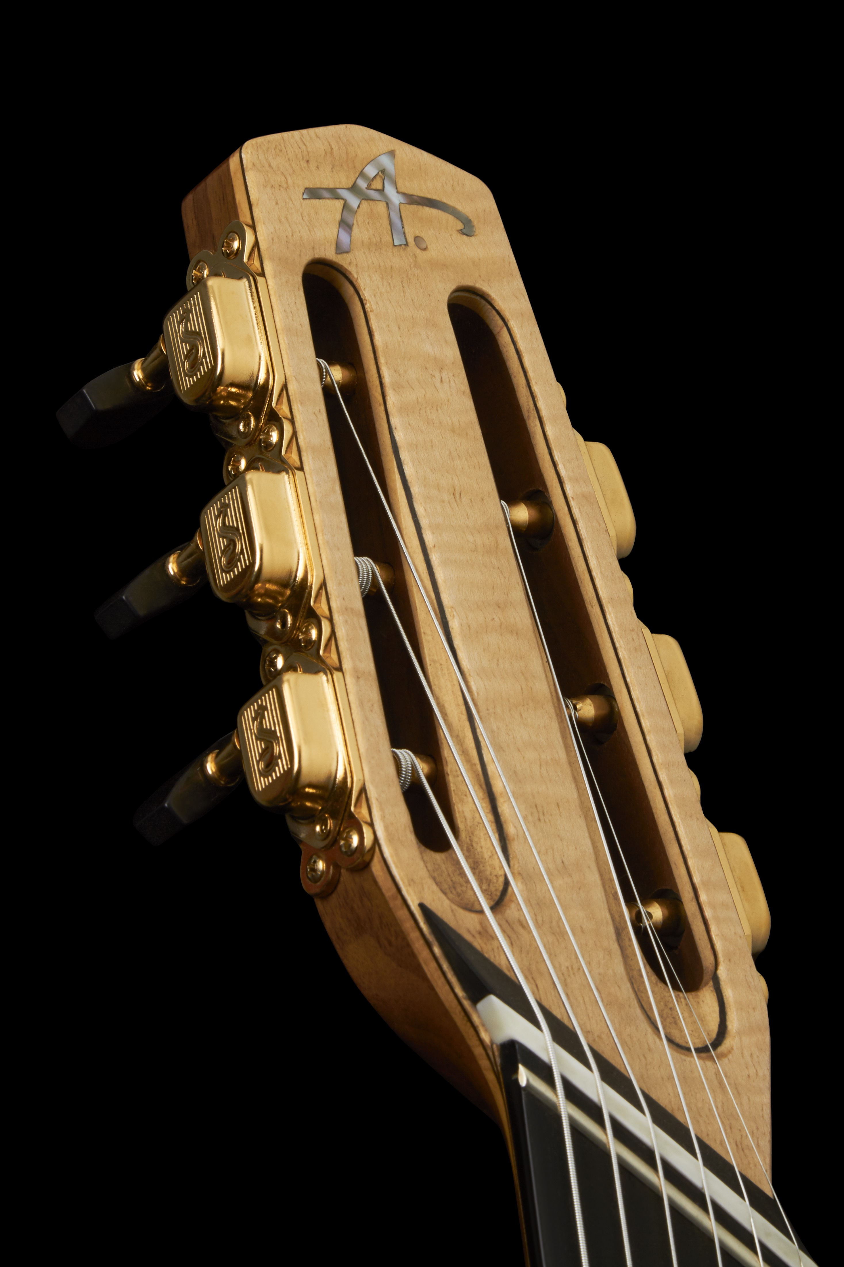 'Fannned Fret' guitar