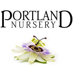 Portland Nursery Logo