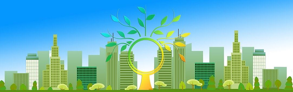 Klimaattransitie door Lemonfield Projects
