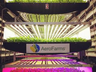 De vooruitgang van verticale landbouw