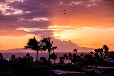Hawaii Alberto-Lama.com 29.jpg
