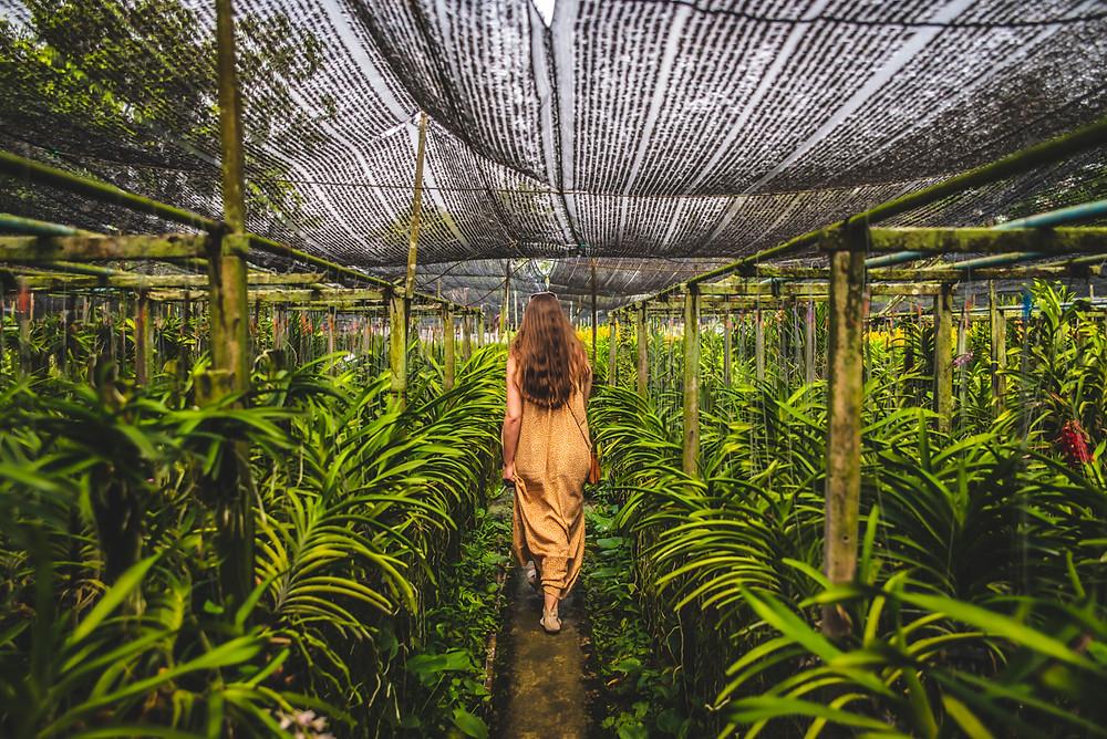 aprende fotografia, tips de viaje, selfie, nomada digital,  tailandia