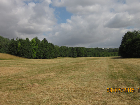 LOCATION : NATURAL DECOR NEAR PARIS