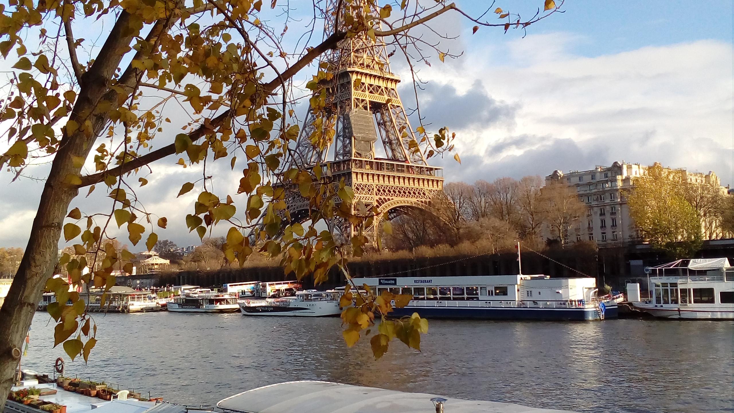 Avenue Paris 16