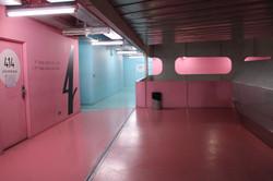 Pink  & Blue Area