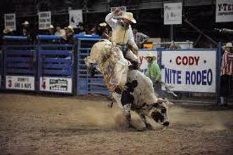 Cody Rodeo.jpg