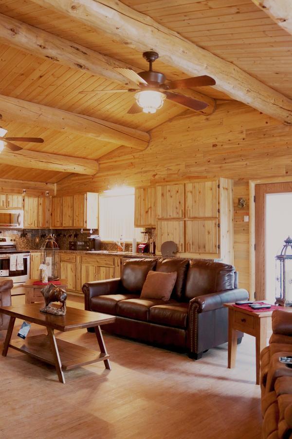 Open area kitchen/living room