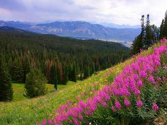 Beartooth Mountain Scenic Byway Opening Memorial Weekend