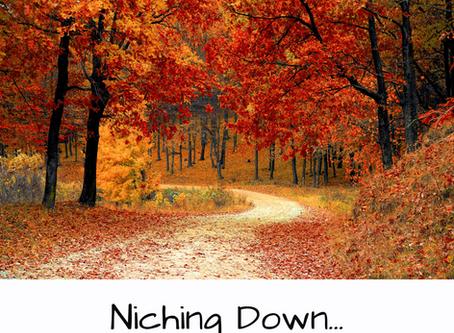 Niching Down...