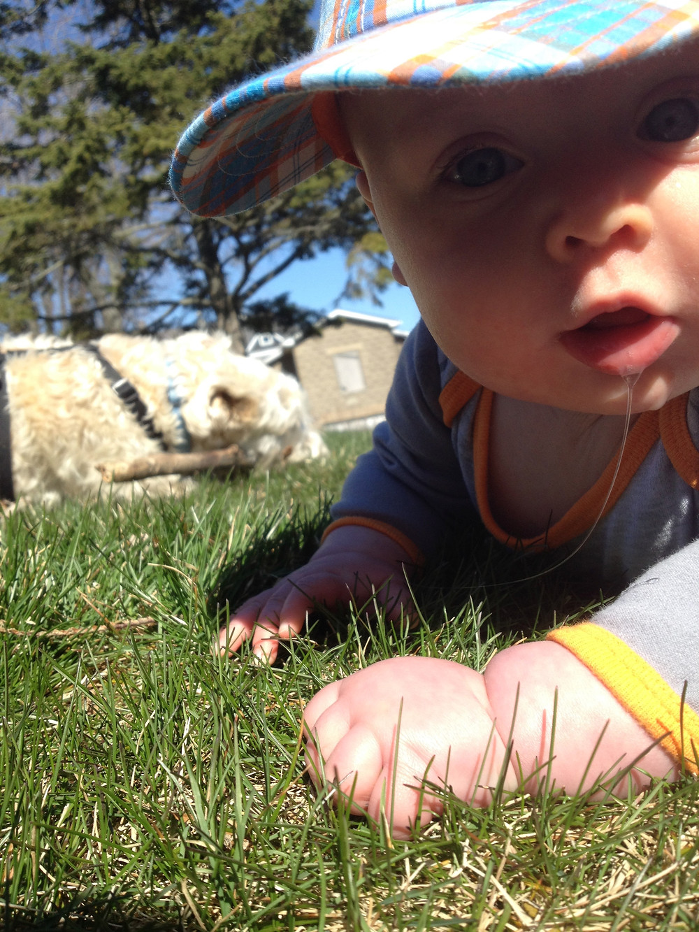 4 month old tummy time on grass, Photo by Monica, on Instagram @mamanonthetrail