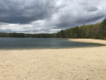 It's Not What You Expect at Walden Pond
