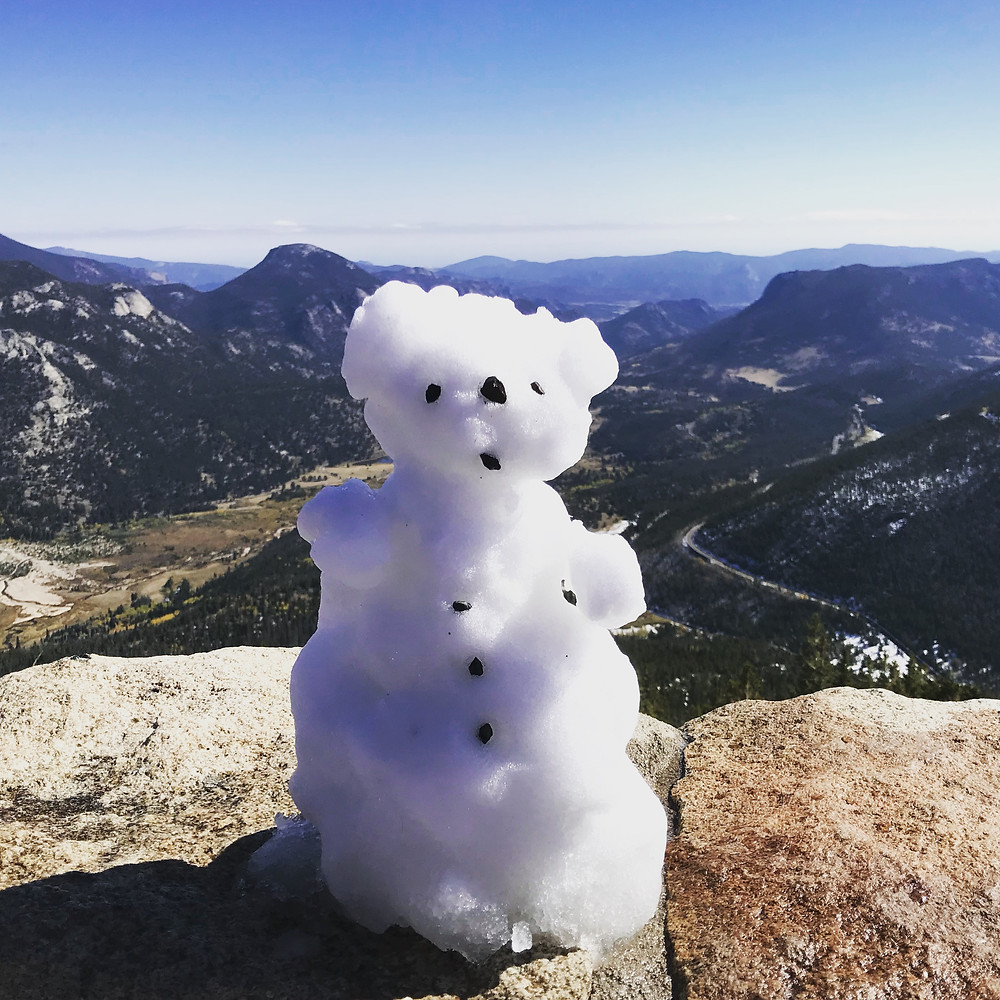 Snow Bear overlooking the National Park