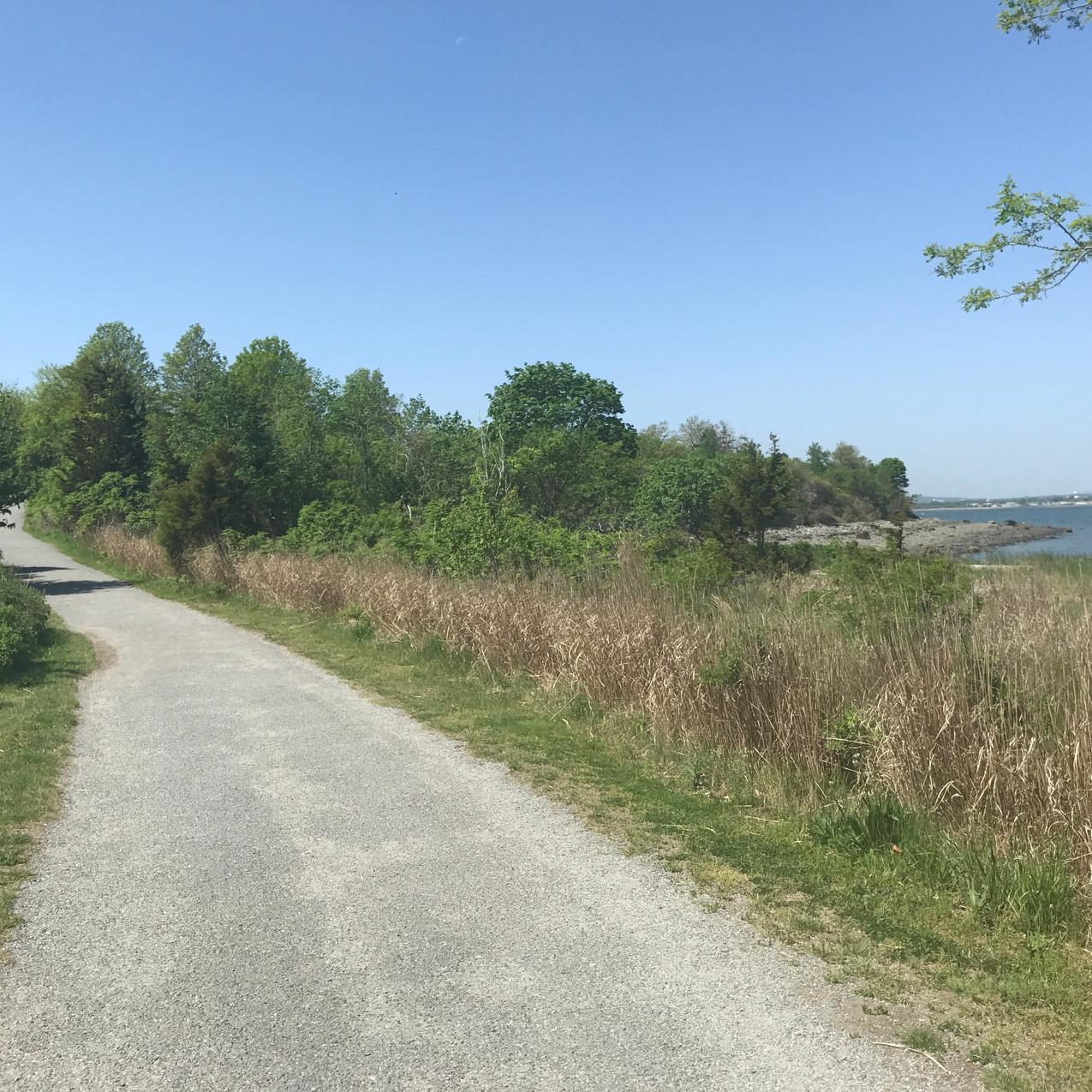Paths at Webb