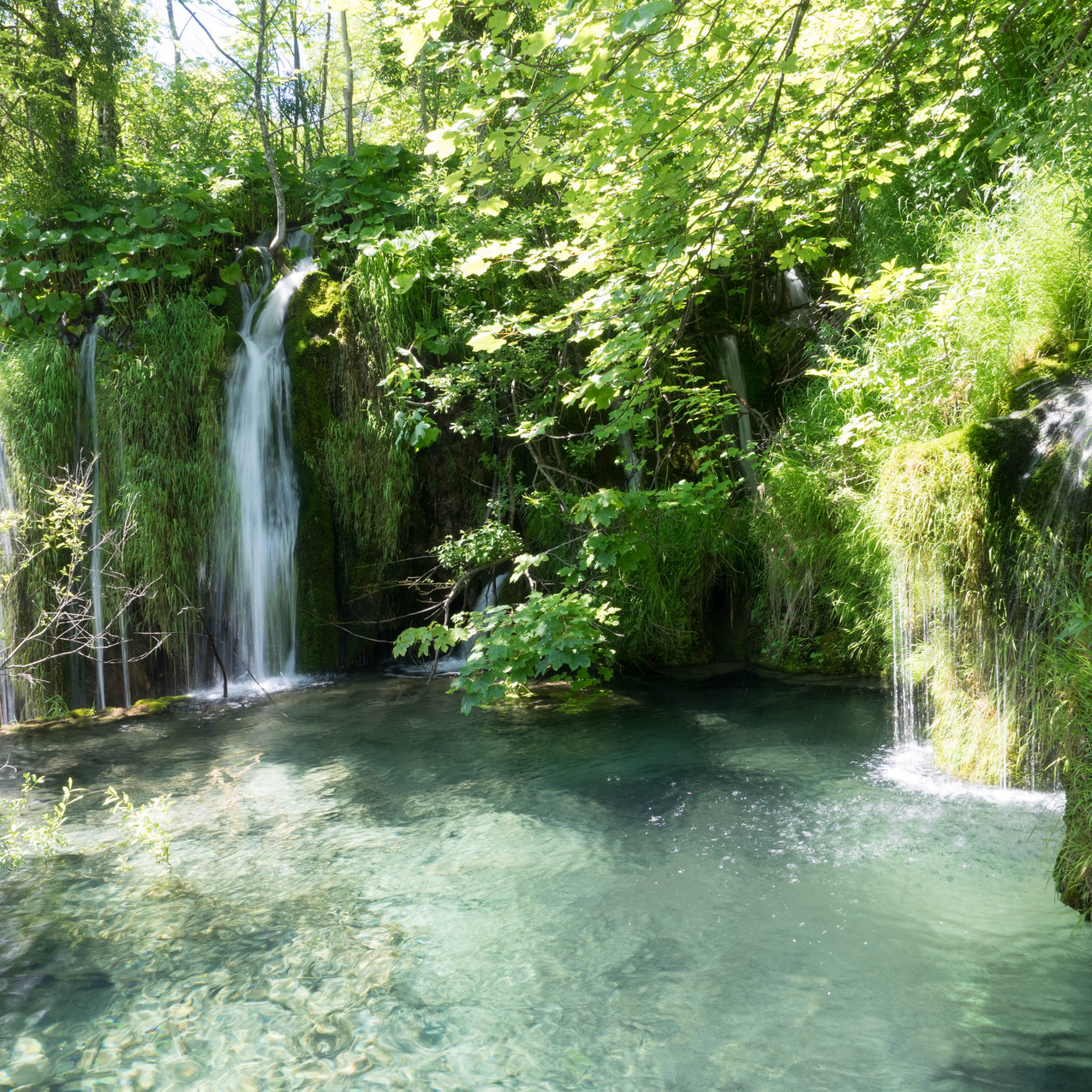 Pool at Plitvice Lakes