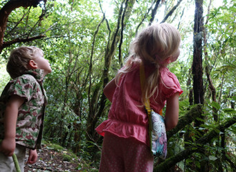 Exploring Abroad Series: 5 Family Friendly Hikes in New Zealand