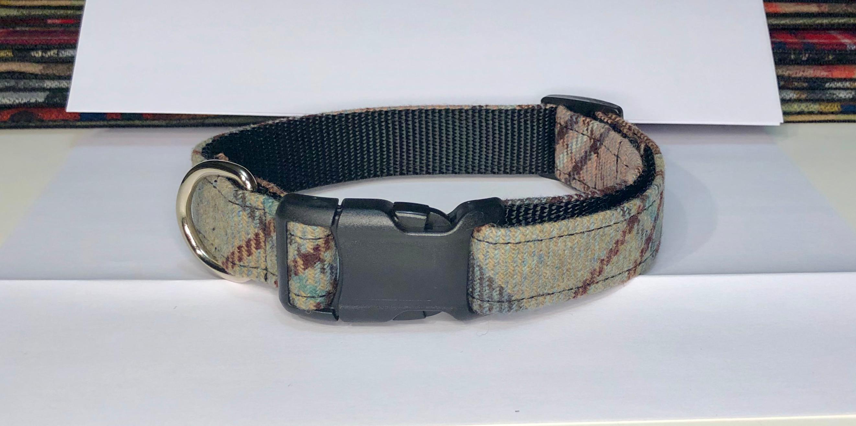 Ashland Collar