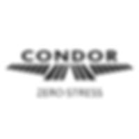 Condor Darts