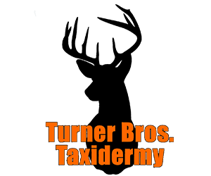 BUCK_FEVER_AD_TURNER_BROS_TAXIDERMY.png
