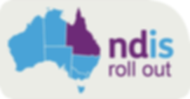 ndis rollout.png