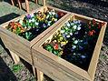 breakaway mini flower garden
