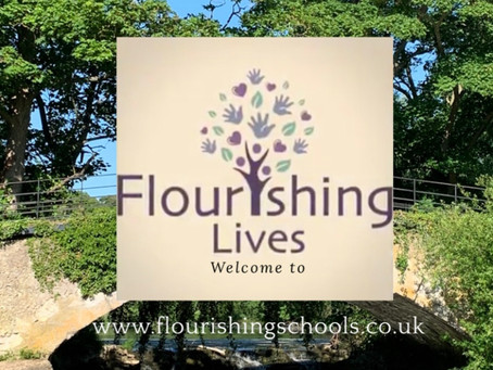 Flourishing Lives-Wellbeing Newsletter 2 July 2020