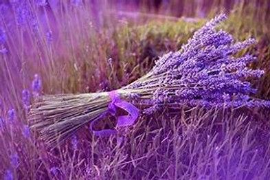 Lavender Pure Essential Oil 12ml