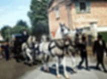 Carro e cavalli 1.jpg