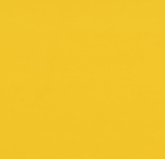 Sarlon Uni yellow
