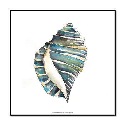 Aquarelle Shells I - Framed & Mounted