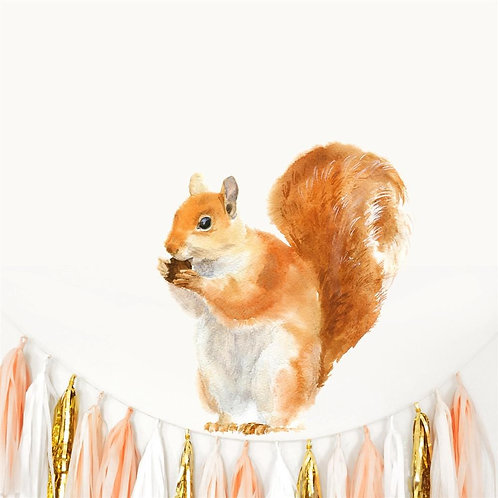 Red Squirrel - Kids Wall Stickers