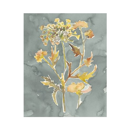 Collected Florals - Canvas Art