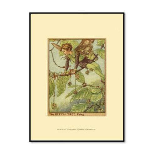 The Beech Tree Fairy - Framed & Mounted Art