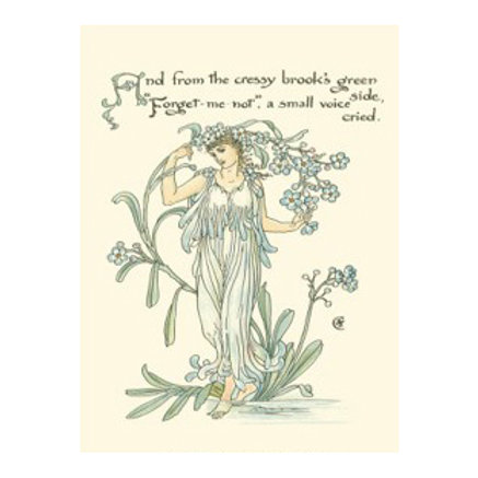 Shakespeare's Garden VII (Forget me not) - Canvas Art