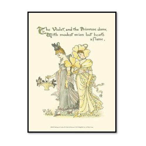 Shakespeare's Garden XI (Violet & Primrose) - Framed & Mounted Art