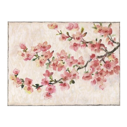 Cherry Blossom I - Canvas Art