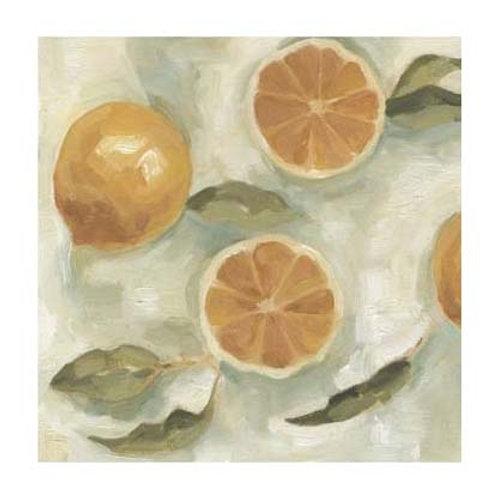 Citrus Study in Oil III - Canvas Art