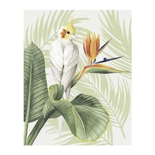 Avian Paradise II - Canvas Art