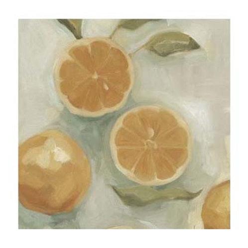 Citrus Study in Oil I - Canvas Art
