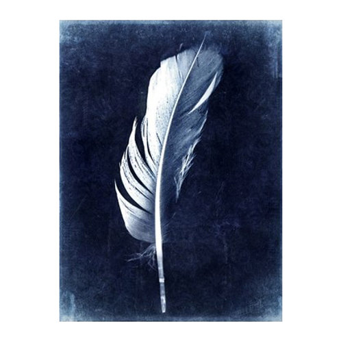 Inverted Feather II - Canvas Art
